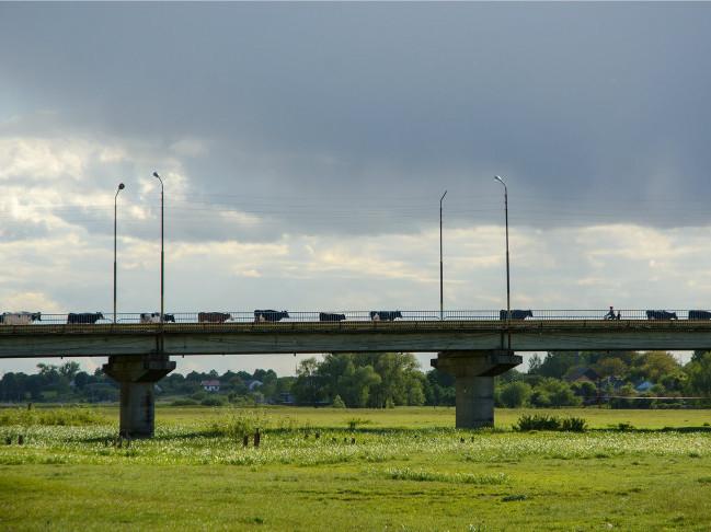Через міст переходять корови
